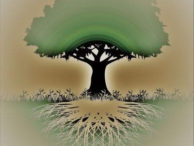 Drvo-silueta 011